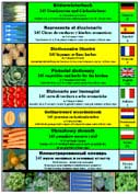 Dictionnaire illustr� 145 l�gumes et fines herbes (DE-EN-ES-FR-IT-NL-PL-RU)