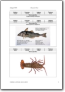 Uniprom: Fish Glossary (DE-EN-FR-IT-LA)