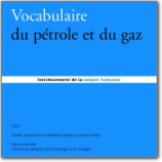 DGLF - French>English Petroleum and Gas Vocabulary - 2007 (FR>EN)